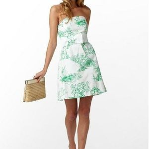 Lilly Pulitzer Amberly Dress Spring Fever Toile